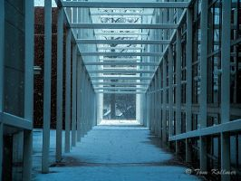 Winter at the Wex by MonkeyBrainedImagery