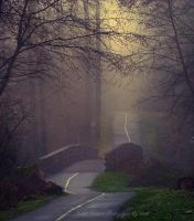 Foggy Path by Violet-Kleinert