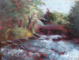 Stream in the Woods by Contrast-and-Colour