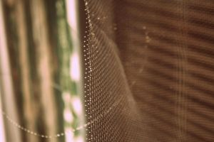 Mesh by aRT-iS-eXTaSY