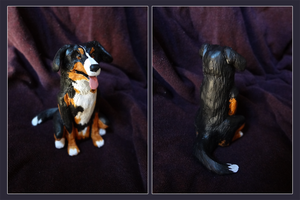 Burnese Mountain Dog by E-Pendragon