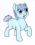 Foal Nykkes by BrandyKiss