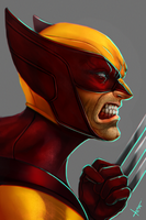 Classic Wolverine by victter-le-fou