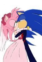 Sonamy Wedding of the Century by TropicalCandy