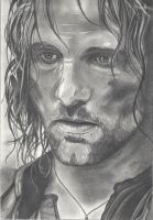 Aragorn by emicathe