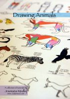 Drawing Animals book cover by Majnouna