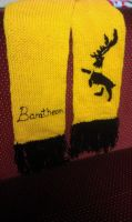 Baratheon Scarf by themagpiesnest