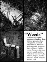 Weeds by MulchMedia