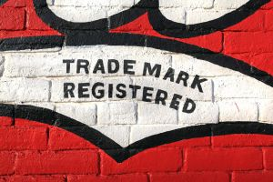 TRADE MARK REGISTERED by ScarredWolfphoto