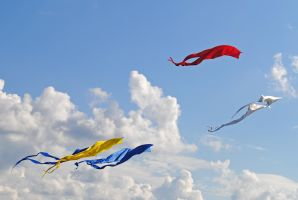 kites 5 by LucieG-Stock
