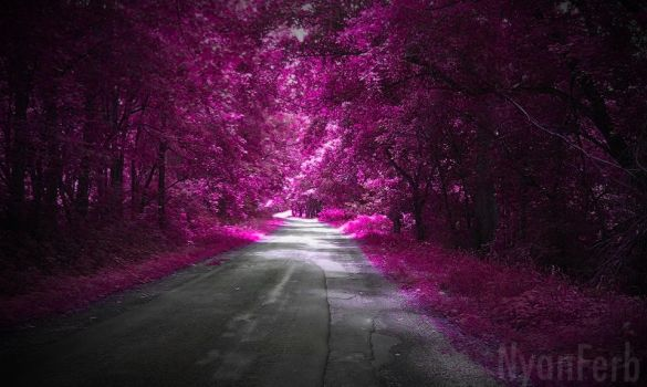 Pink Forest by InsomniaQueen