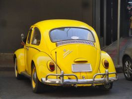 Yellow Bug by zynos958