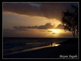 SunSet Walk by Mayanita