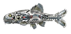 Killer Robotic Minnow by RobKing21
