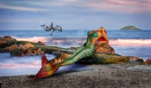 The Mermaid on the Beach by Izilja