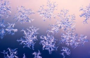 Ice Crystals On The Window by Nitrok