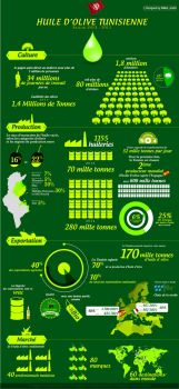 Oliv oil infographic by marafet