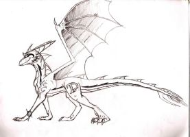 Deathtail New Design (probably) by Deathtail-The-DraCon