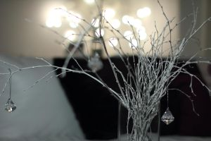 Encrusted Branches by OPrwtos