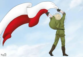 Polish Independence Day by Kana93