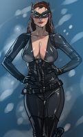 Dark Knight Rise's Catwoman by Ganassa