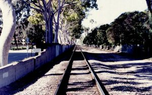 Railroad WP by 17thletter
