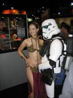 Leia and Stormtrooper by tu160