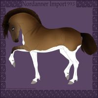 Nordanner Import 993 by s1088