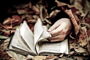 The Reader. by TinaApple