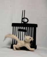white fox left his cage pic 1 by morhean