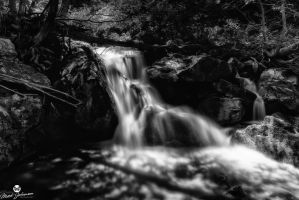 Glow of the Waterfall BW by mjohanson