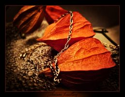 Autumn Jewellery by selflove-sick