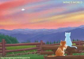 Cats by wingworld