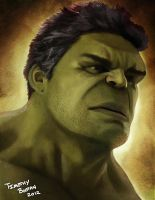 The Hulk by trpbootan