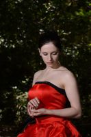 Red Satin Portrait 16 by Anariel-Stock