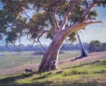 Arthurs creek Gums - Vic by artsaus