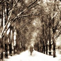 Cold memories by DilekGenc