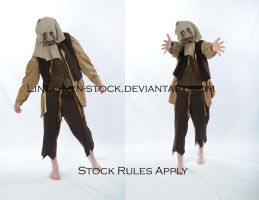 Scarecrow2 by lindowyn-stock