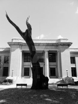 Fort Myers Court House B and W by dogfolife69