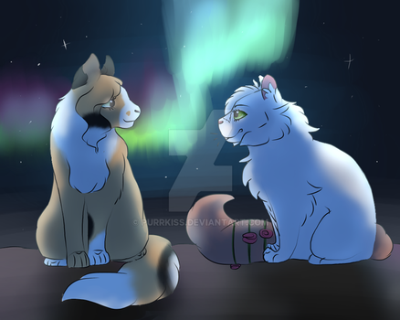 Collab 1 by KittycatRolePlayer