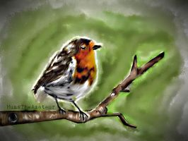 Robin. by HumsTheAmateur