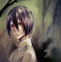 Noblesse: young Rai by Sawitry