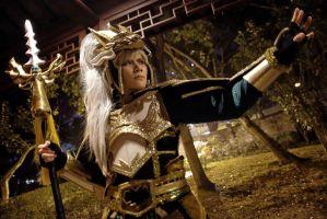 Dynasty Warriors 8 by roadscream