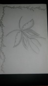 My butterfly sketch by Cassi4you