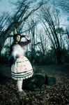 Alice - Late but lucky - Alice Madness Returns by artflower
