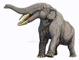 Amebelodon by DiBgd