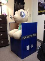 The box that Doctor Whooves was mailed in by LumenGlace