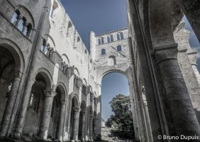 in jumieges abbaye 1 by BD-76