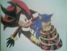 Naga Shadow and Sonic 1 by PrincessShannon07