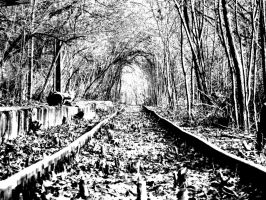 Forgotten railway track by vesperlynd321